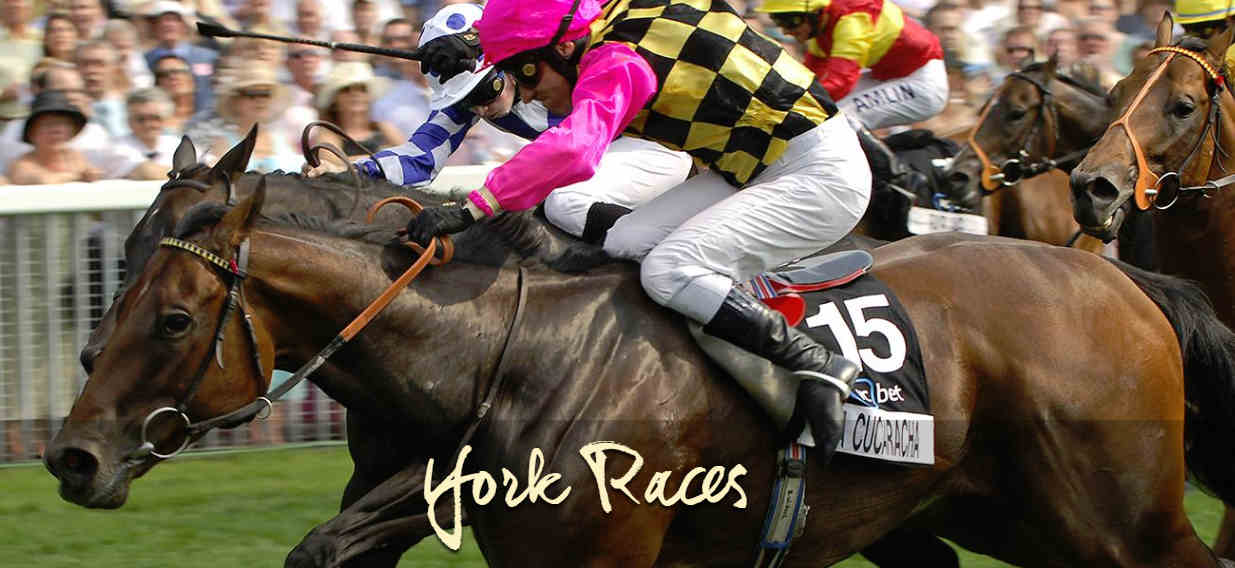York_Races